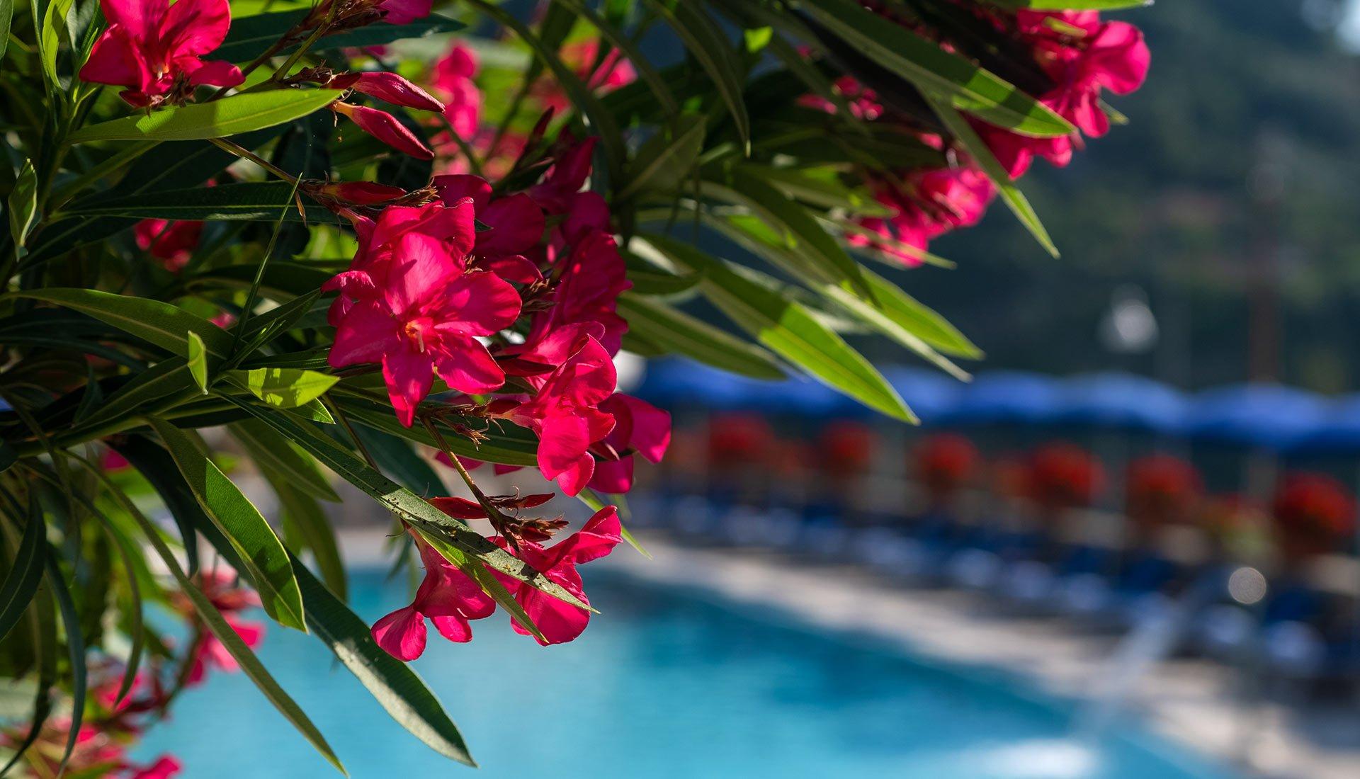 albergo-sanlorenzo_piscine_album_03
